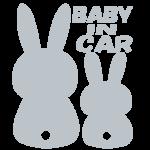 babyincar_silver